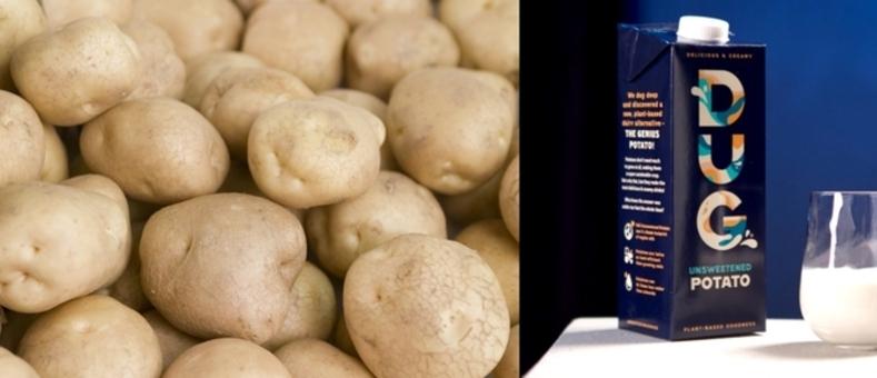 [비거노믹스] 스웨덴 스타트업 '감자'로 만든 우유 선봬