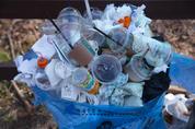 플라스틱 쓰레기는 균이 해결한다?