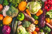 채식을 시작하고 피곤하고 힘이 없다면?